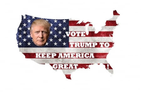 Great Prez - freedom, America, politics, vote, Trump, flag