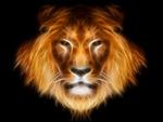 Large Leo