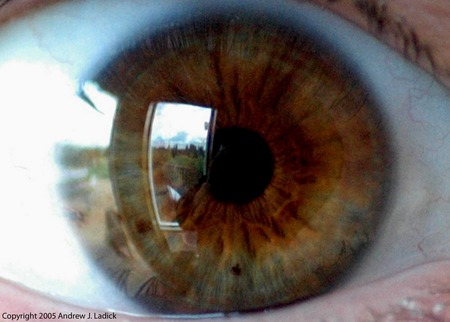 Kimberlys Eye - photograph, human, womans, eye, hazel