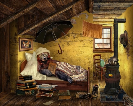Bear in the attic - books, bed, painting, oven, umbrella, funny, room