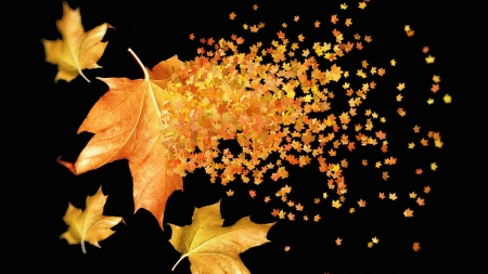 Maple Gold - autumn, leaves, gold, maple, yellow, scatter, fall, Firefox theme, breeze, wind