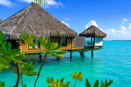 Bora Bora resort - Polynesia, sea, rest, resort, exotic, vacation, hut, ocean, french, beautiful, bora bora, paradise, summer