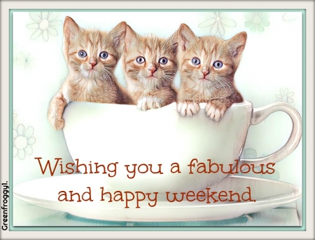 FABULOUS WEEKEND - FABULOUS, COMMENT, WEEKEND, CARD