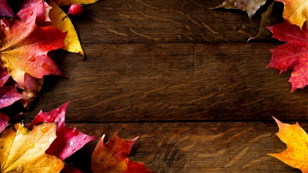 Welcome Autumn! - digital art, background, fall, autumn, leaves, wallpaper, leaf