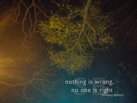 Nothing is wrong, no one is right - thoughts, tree, thought, sandeep behare, quote, quotes, beharesandeep, nature, night