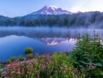Mount Rainier Nat'l. Park, Washington State