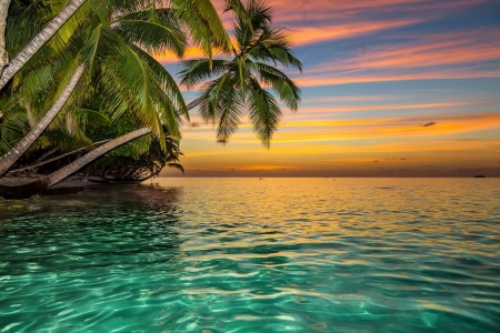 Caribbean sunset - rest, vacation, exotic, ocean, sunset, sky, palms, sea, caribbean, water, paradise, summer, tropics, reflection