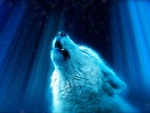 Wolf Singing to the Stars