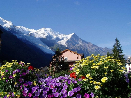 Mont Blanc Trek, French Alps - sky, landscape, house, flowers, blossoms, trees