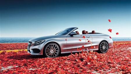 Mercedes-Benz - autumn, leaves, sky, car