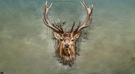 Deer art - animals, deer, art, wallpaper, wildlife, digital art, wild animals