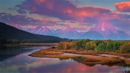 sunrise over Oxbow Bend - wyoming, river, sky, trees