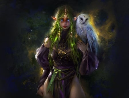 Enchantress - pasari, enchantress, witch, art, owl, frumusete, oolga samets, luminos, sorceress, bufnita, fantasy, bird