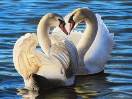 White Swans - water, paint, white, birds, couple, swans
