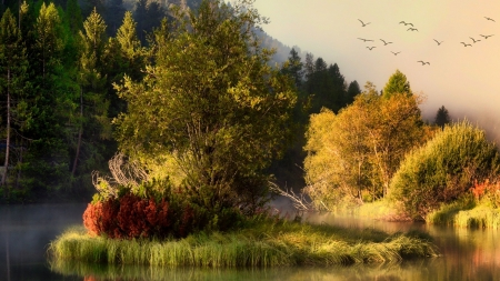 Island of Change - Firefox theme, pond, fall, change, autumn, island, trees, marsh