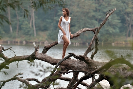 Model out on a Limb - brunette, dress, tree, model, water