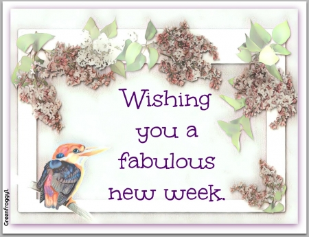 FABULOUS NEW WEEK - WEEK, COMMENT, FAB, CARD