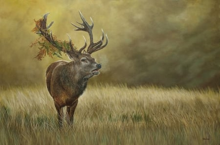 King Deer - grass, paint, animal, deer