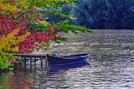 Wooden boat in river - boat, autumn, serenity, park, river, branches, wooden, lake, beautiful