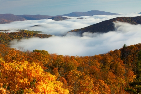 Shenandoah National Park, Virginia - Orange, Foilage, Leaves, Virginia, Fog, Trees, Rust, Landscape, Mountains, Color, Clouds, Park, Autumn, Gold, Forest, Beautiful, View, Red