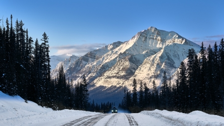 Winter in Banff Nat'l. Park