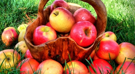 Autumn apples - fall, still life, apple, harvest, photography, autumn, wallpaper, fruits
