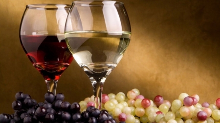 Wines - photography, harvest, alcoholic drink, wallpaper, wine, drink, fall, autumn, grapes, still life