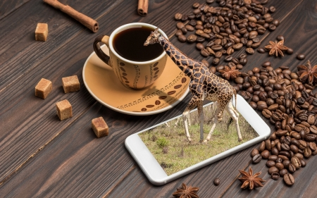 Coffee, Phone and Giraffe - phone, giraffe, coffee, beans, cup