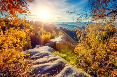 Autumn in mountain - mountain, fall, autumn, sun, rays, golden, beautiful, trees, sky
