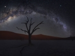 Milky Way over Dead Vlei