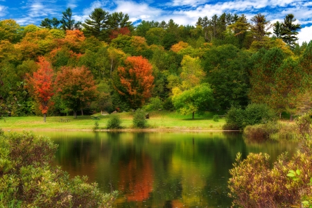 Autumn comes - reflection, lake, forest, fall, autumn, colors, beautiful