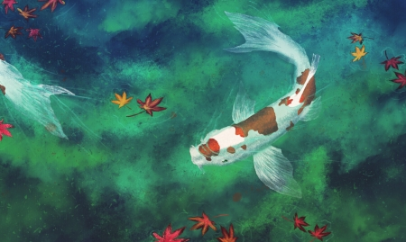 Koi - view from the top, autumn, luminos, fish, orange, toamna, koi, leaf, pond, fantasy, water, vara, pesti, summer, vagabond frv, blue