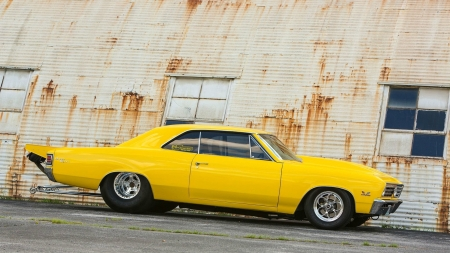 1967 Chevelle SS ~ Dragster - chevelle, dragster, 1967, car