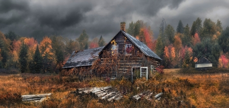 abandoned - cabin, overcast, forest, fall, trees, drygrass