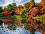 Colorful autumn reflections