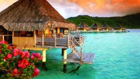 Tropical Paradise - holidays, huts, islands, ocean, bora-bora, sea, turquoise, cyan, water, resorts, beaches, beauty, micronesia, nature, tropics