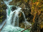 Little Qualicum Waterfall