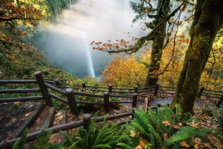 View of waterfall in autumn - forest, fence, fall, leaves, autumn, view, waterfall, walk, trees