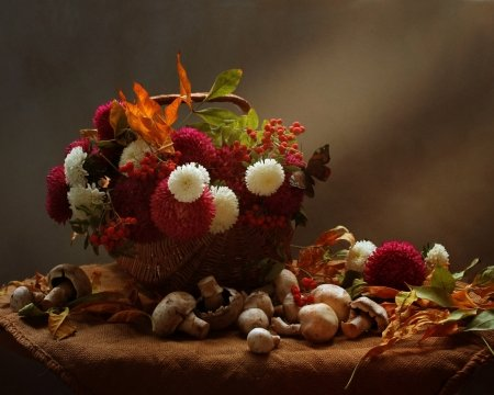 Still Life - settings, flowers, basket, Still Life
