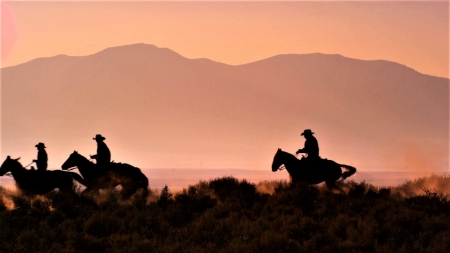 cowboys at sunset - sunset, pink, wild west, cowboys