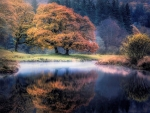 Autumn At The Lake District, UK