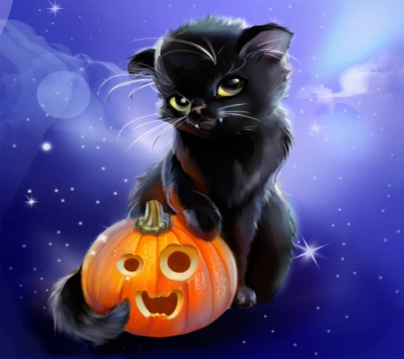 Black Cat with pumpkin - cat, drawing, orange, pumpkin, painting, black