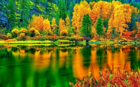 Breathtaking Autumn Colors - nature, forests, stunning, lakes, autumn, orange, colors, breathtaking, water, green, beauty, reflections