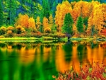 Breathtaking Autumn Colors