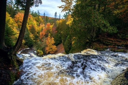 Autumn Colors at Laughing Whitefish Falls, Michigan - fall, forest, river, trees, colors