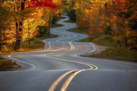 Autumn in Wisconsin - highway, autumn, nature, trees, wisconsin