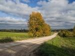 Road in Latvia