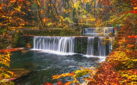 Autumn Waterfall - waterfall, nature, autumn, trees