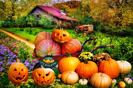 Pumpkins at Grandpa's Barn - flowers, cart, tractor, halloween, autumn