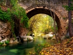 Stone bridge in autumn